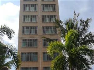 夏日附近,电梯新房单间首次出租1室 0厅 1卫500元/月