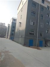 东城花园G区1~3#楼,131平米