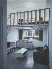 槿夏年华公寓1室 1厅 1卫1300元/月