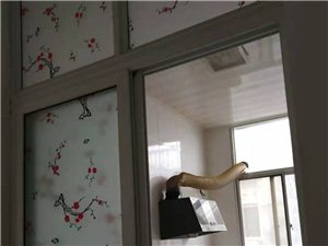 盛世广场小区2室 1厅 1卫600元/月