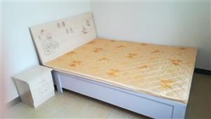姜�成�^,新大新后面1室 1�d 0�l300元/月
