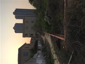 东方市中心地皮出售
