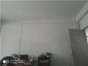 公望街第四年3室 1廳 1衛350元/月