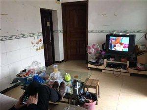 新华街幼儿园2室 1厅 1卫800元/月