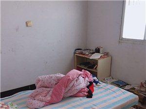老二高2室 1厅 1卫10000元/月