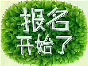 輔導班小飯桌招生