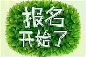 辅导班小饭桌招生