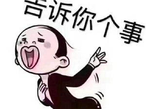 小厨娘淮扬菜
