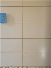 专业保洁瓷砖美缝