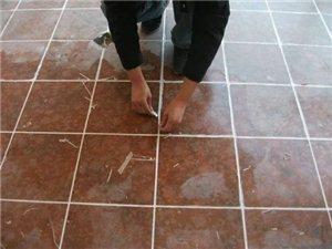 专业承接瓷砖美缝