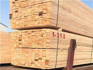 長治建筑木方多少錢一方