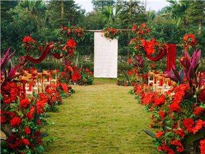 澳门银河娱乐场网址区摩朵婚礼留一生浪漫时刻