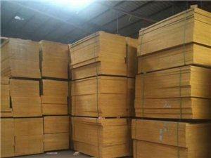 南通建筑木方供應商