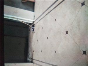 室内瓷砖装修