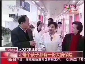 中国人寿保险