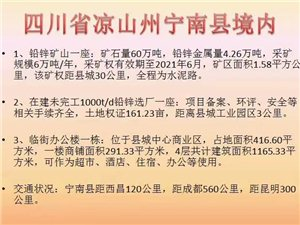 宁南县铅锌矿山,选厂,城中办公楼转让