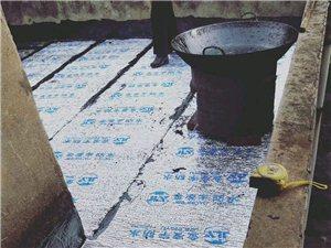 專業樓面防水
