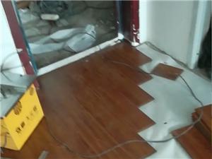 專業鋪木地板