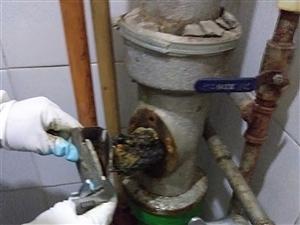 專業疏通維修上下水