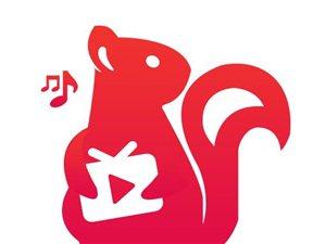 松鼠直播招商加盟代理娛樂直播招商加盟