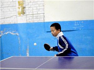 無極縣乒乓球培訓中心