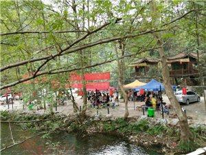 虾子溪上游建大型休闲场所,环境影响堪忧