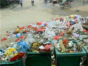 关于段屋乡段屋圩的生活垃圾处理问题