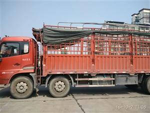 东风天锦8米6仓栏车出售