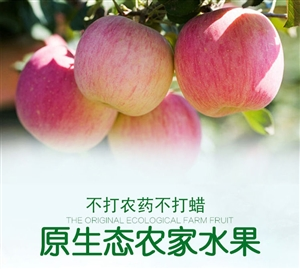 彬县水晶富士销售18681885720