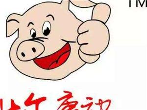 豬用疫苗供應商