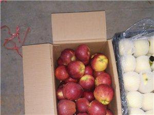 批發富士,黃香蕉,花牛蘋果。