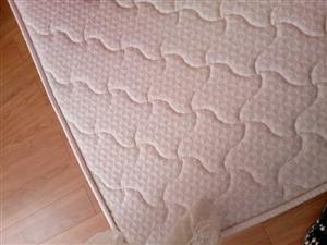 低价处理品牌乳胶棕床垫