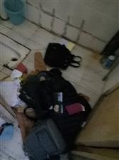 川教女生寝室东西被偷