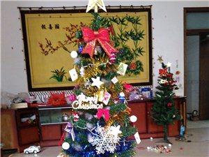 批发60cm.150cm加密豪华套餐圣诞树
