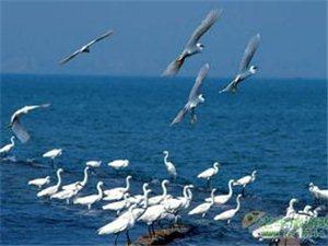 海南儋州的一日游