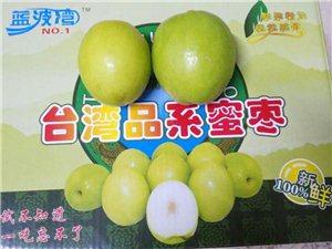台湾蜜枣,大青枣采摘观光