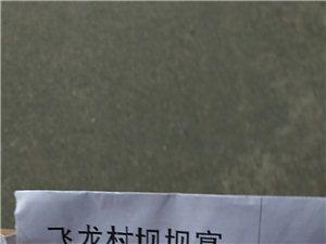 桑枣飞龙村