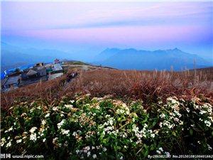 正月骑自行车到萍乡,然后去武功山