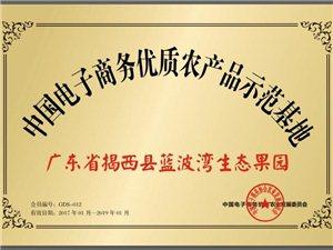 台湾品系蜜枣,青枣园。入园新鲜现摘,观光休闲