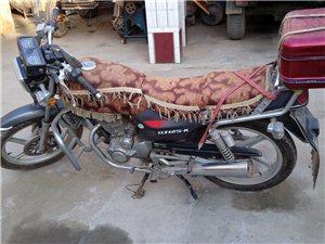 钱江龙,摩托车出售