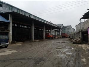 319线旁大型厂房出售