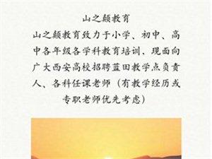 青云教育――招贤纳士