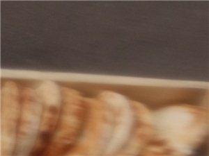批發夾餅,肉夾饃餅子
