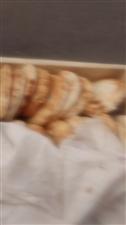 批发夹饼,肉夹馍饼子