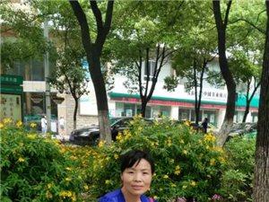 寻找团林新村王先宝。刘桂香