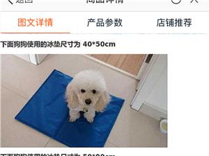 宠物冰垫子座垫一物多用