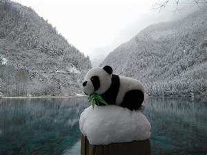 九寨沟雪景。不同于夏的美。