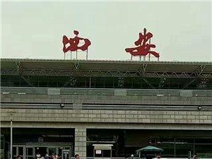 这个适合旅游的季节,想要出门走走吗?直通咸阳机场航站楼的大巴在等您,予您一段美好旅途的开始。
