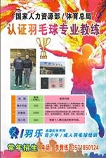 临潼区青少年、成人羽毛球专业培训