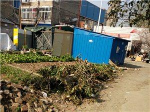解决天乐小区种菜园